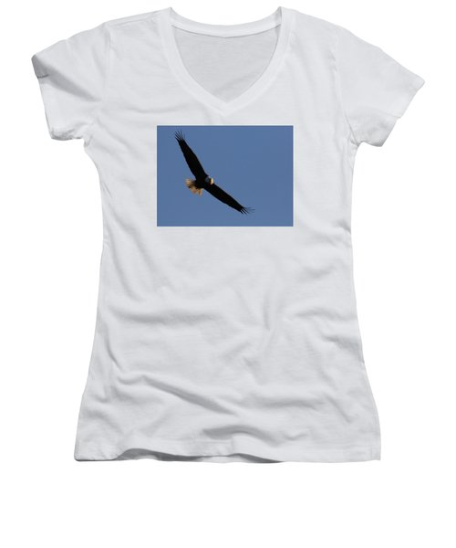 Soaring Eagle Women's V-Neck T-Shirt (Junior Cut) by Brook Burling