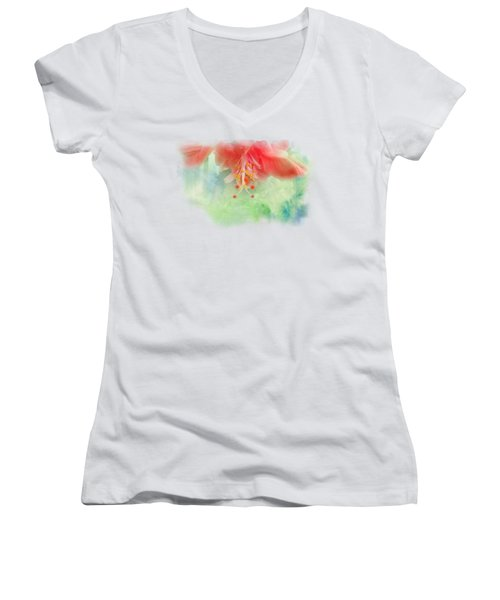 Softly Colored 1 Women's V-Neck