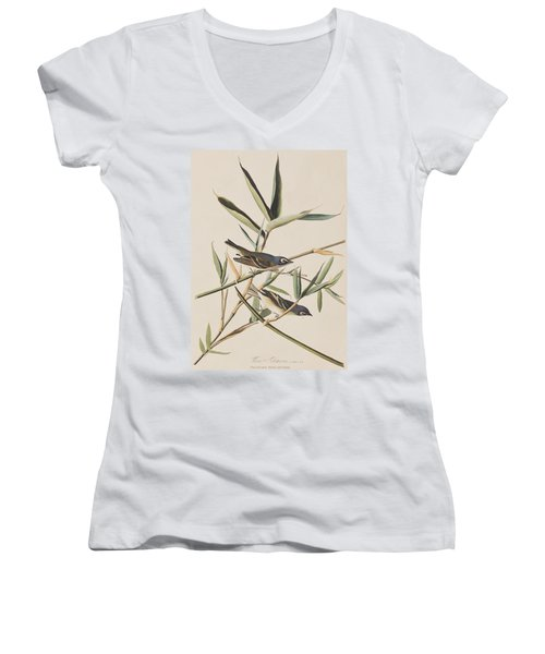Solitary Flycatcher Or Vireo Women's V-Neck T-Shirt (Junior Cut)