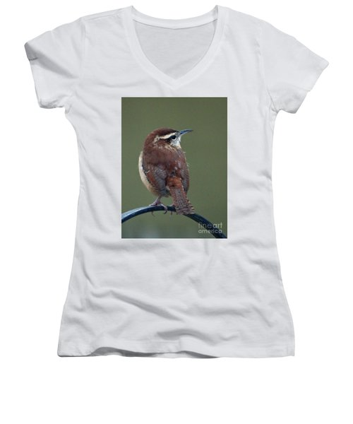 Song Bird 2 Women's V-Neck (Athletic Fit)