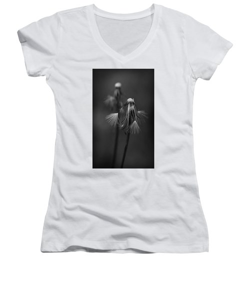Spent Wishes Women's V-Neck (Athletic Fit)