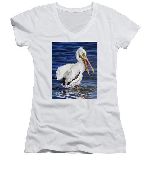 Splendor At Half Moon Island Women's V-Neck T-Shirt (Junior Cut) by Phyllis Beiser