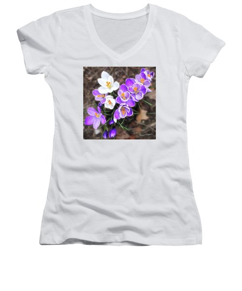 Spring Beauties Women's V-Neck T-Shirt (Junior Cut) by Terri Harper
