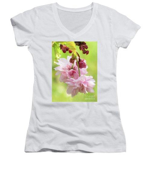 Spring Blossoms #8 Women's V-Neck T-Shirt