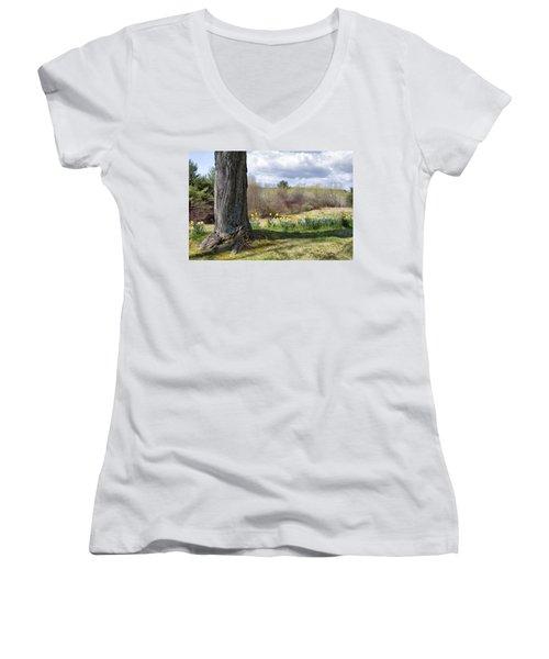 Spring Daffodils  Women's V-Neck T-Shirt (Junior Cut) by Betty Pauwels