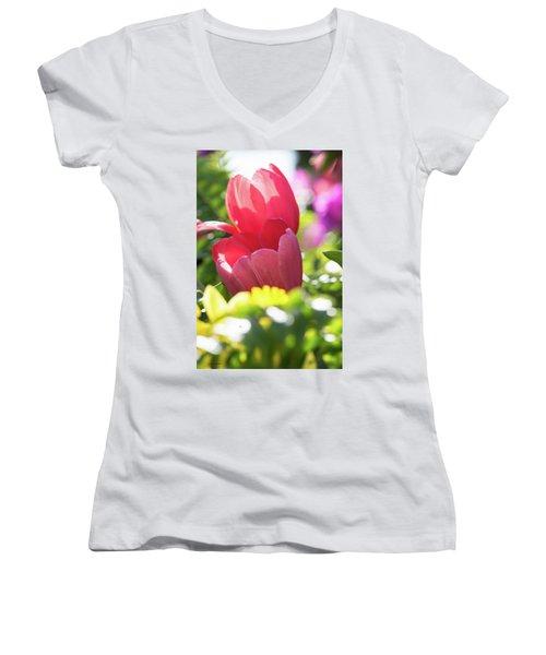 Spring Feeling Women's V-Neck T-Shirt