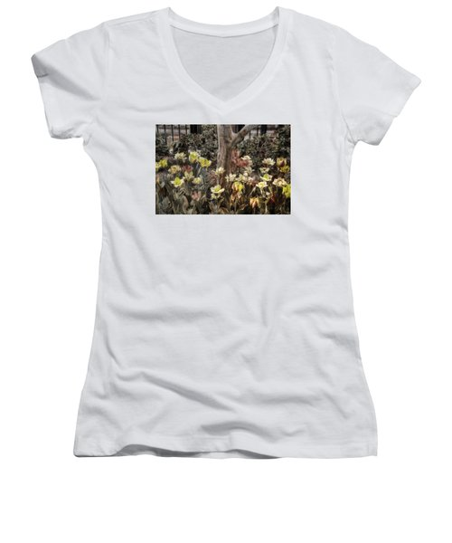 Women's V-Neck T-Shirt (Junior Cut) featuring the photograph Spring Flowers by Joann Vitali