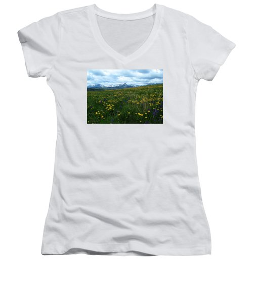 Spring Flowers On The Front Women's V-Neck T-Shirt
