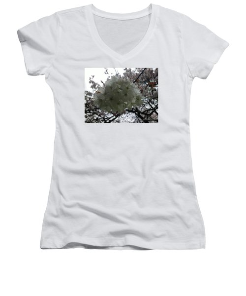 Women's V-Neck T-Shirt (Junior Cut) featuring the photograph Spring by Hanza Turgul