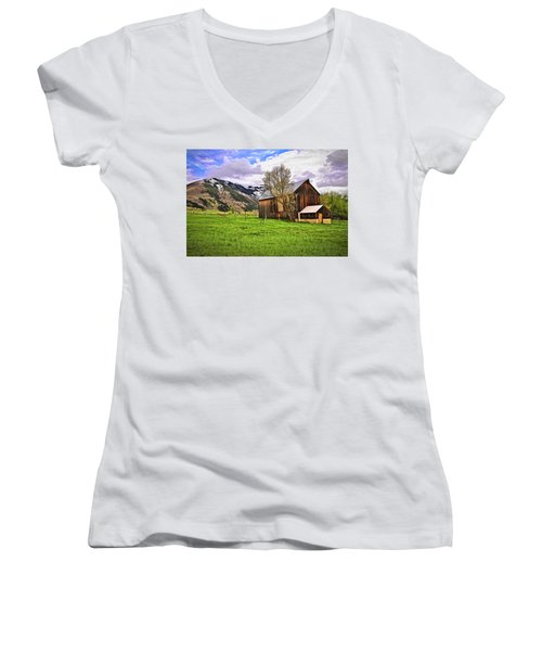 Women's V-Neck T-Shirt (Junior Cut) featuring the digital art Spring Is All Ways A Good Time Of The Year by James Steele