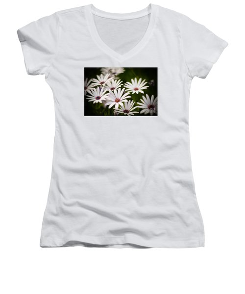 Spring Is In The Air Women's V-Neck T-Shirt (Junior Cut) by Kelly Wade
