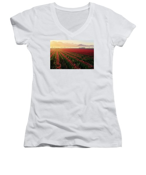 Spring Palette Women's V-Neck T-Shirt