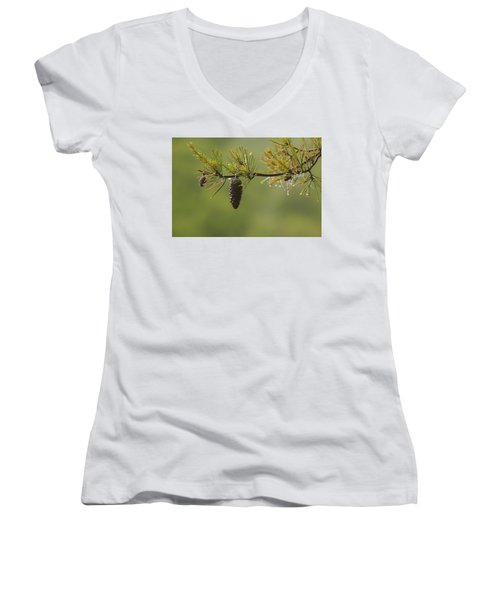 Spring Rain And Pinecone Women's V-Neck T-Shirt (Junior Cut) by Michael Eingle