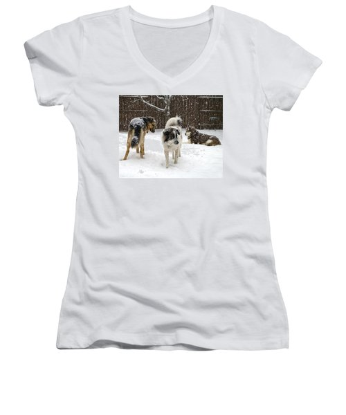 Spring Snow #2 Women's V-Neck (Athletic Fit)