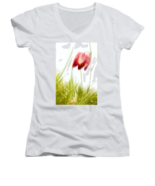 Spring Time Dreams Women's V-Neck T-Shirt
