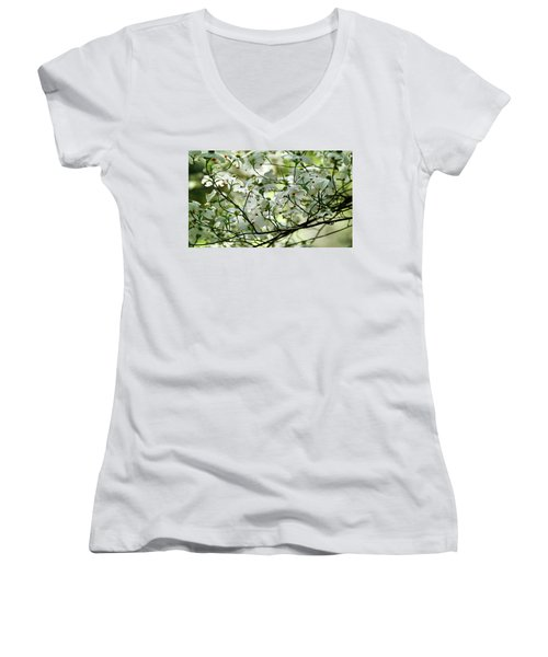 Springtime Women's V-Neck T-Shirt