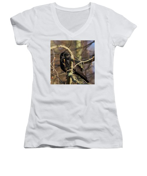 Women's V-Neck T-Shirt (Junior Cut) featuring the photograph Springtime Crow Square by Bill Wakeley