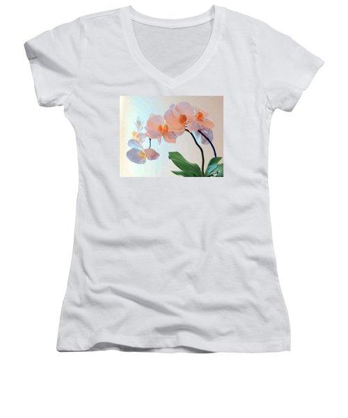 Springtime Delight 2 Women's V-Neck T-Shirt