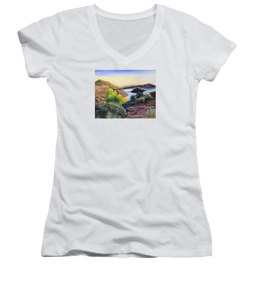 Steinaker Women's V-Neck T-Shirt (Junior Cut) by Sherril Porter