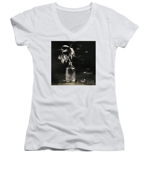 Still Life #141456 Women's V-Neck T-Shirt