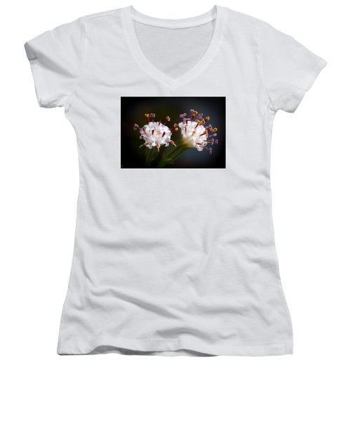 Women's V-Neck T-Shirt (Junior Cut) featuring the photograph String Of Pearl Succulent Flowers by Catherine Lau