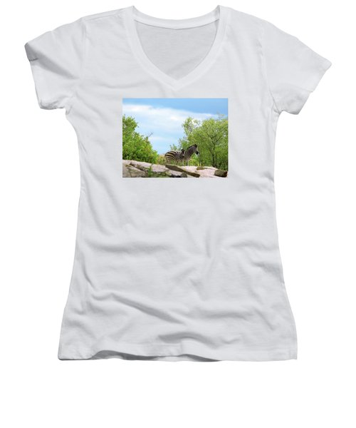 Mama, Who's That Idiot Taking My Picture? Women's V-Neck