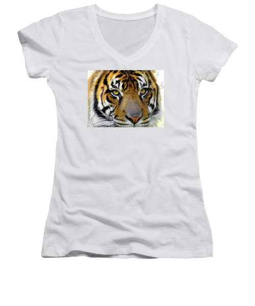 Stripes, No. 26 Women's V-Neck (Athletic Fit)