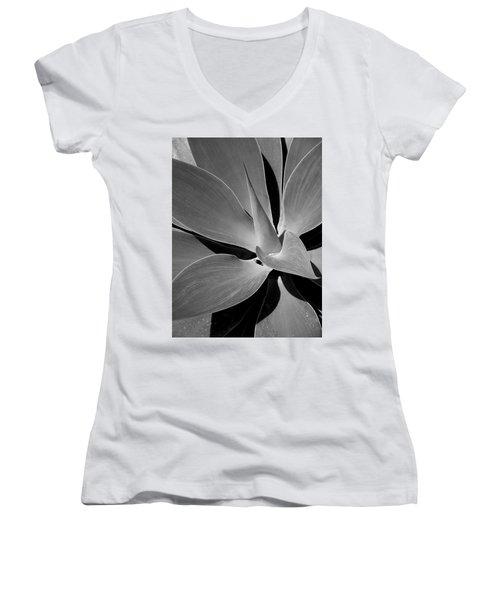 Succulent In Black And White Women's V-Neck T-Shirt (Junior Cut) by Karen Nicholson