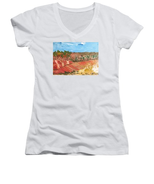 Summer Fields Women's V-Neck (Athletic Fit)