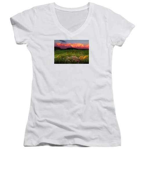 Summer Majesty Women's V-Neck T-Shirt (Junior Cut) by Rob Blair