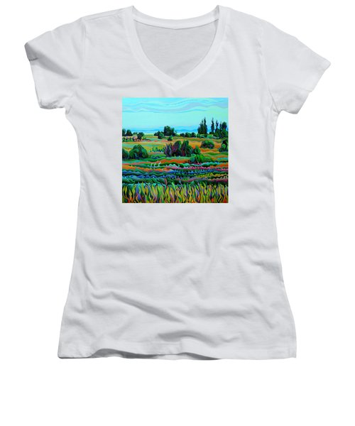 Summer Meadow Dance Women's V-Neck (Athletic Fit)