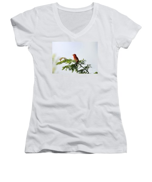 Women's V-Neck T-Shirt (Junior Cut) featuring the photograph Summer Tanager In Mesquite Scrub by Robert Frederick