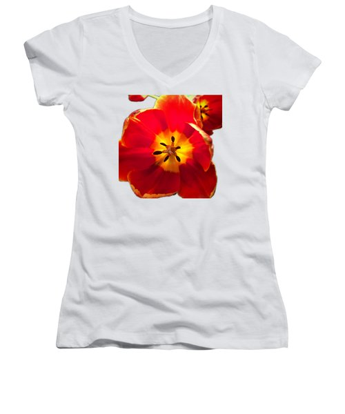 Sunkissed Tulips Women's V-Neck