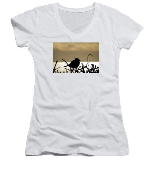 Sunset Bird Silhouette Women's V-Neck (Athletic Fit)