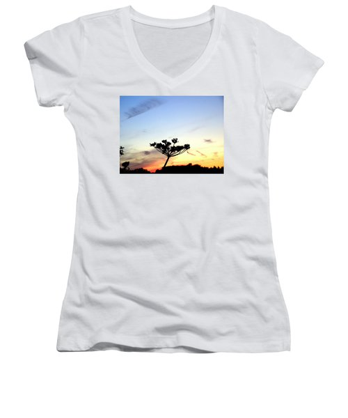 Sunset Seedhead Silhouette  Women's V-Neck (Athletic Fit)