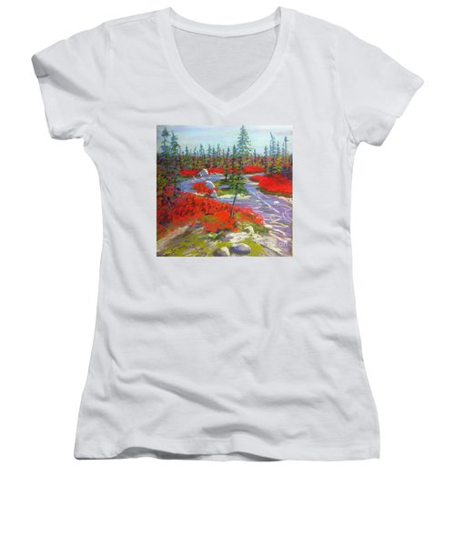Susie Lake Barrens Women's V-Neck T-Shirt (Junior Cut) by Rae  Smith