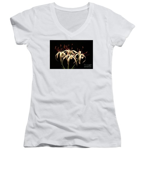 Swamp Lily Women's V-Neck T-Shirt