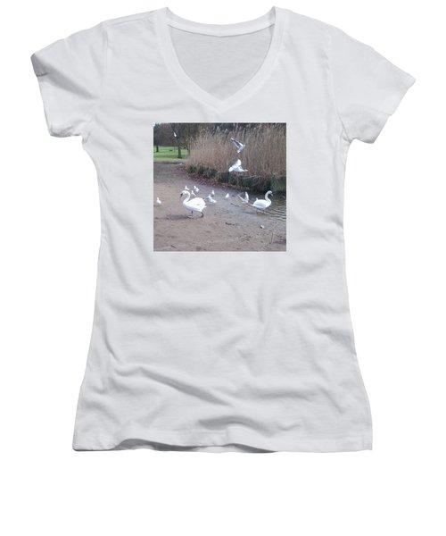 Swans 4 Women's V-Neck