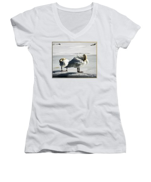 Swans On Ice Women's V-Neck (Athletic Fit)