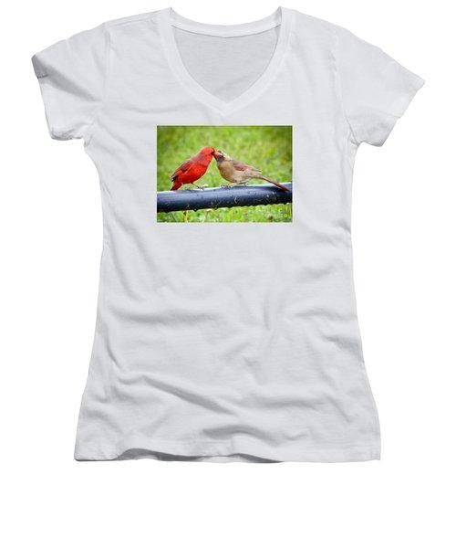 Sweet Cardinal Couple Women's V-Neck T-Shirt (Junior Cut) by Kerri Farley