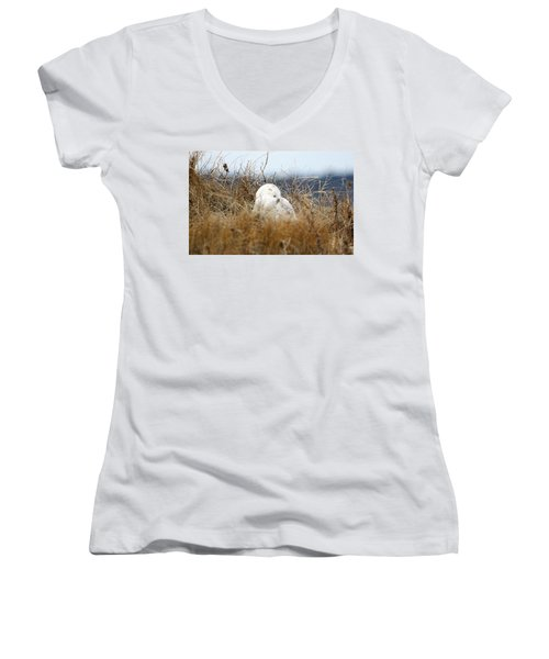 Sweet Dreams Women's V-Neck (Athletic Fit)