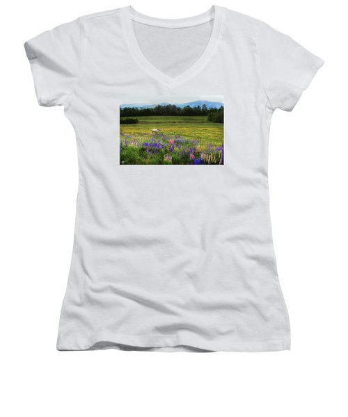 Taking In The View Women's V-Neck (Athletic Fit)