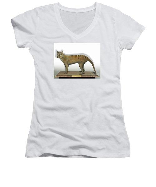 Tasmanian Tiger-thylacinus Cynocephalus-tasmanian Wolf-lobo De Tasmania-tasmanian Loup-beutelwolf    Women's V-Neck