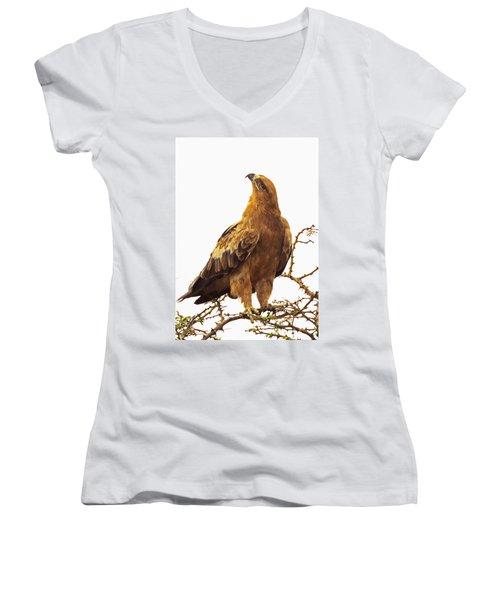 Tawny Eagle Women's V-Neck T-Shirt
