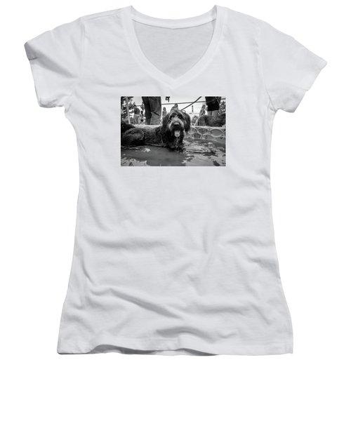 Tdif 65 Women's V-Neck T-Shirt