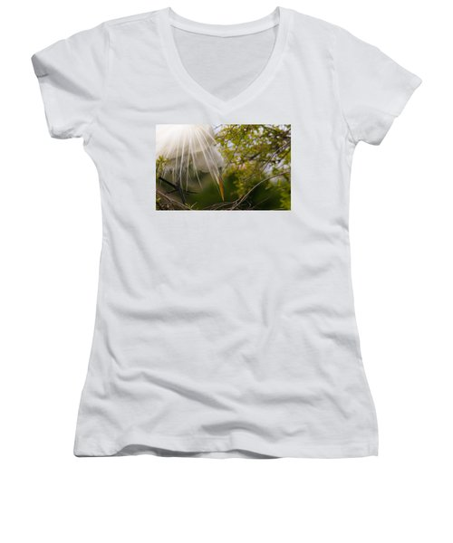Tending To The Nest Women's V-Neck T-Shirt