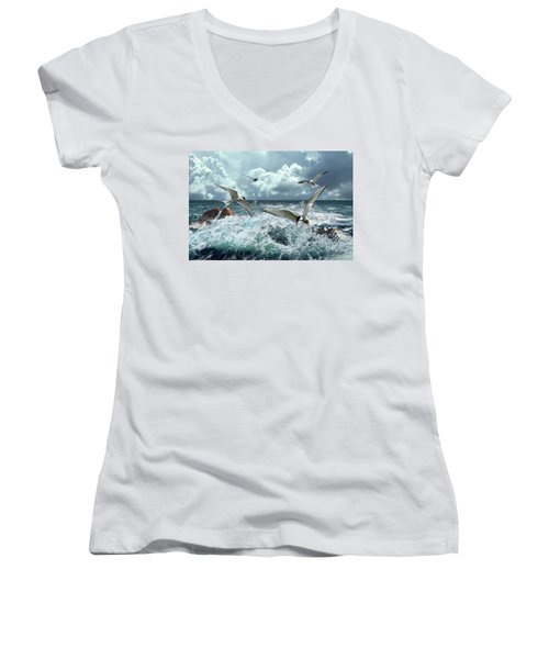 Terns In The Surf Women's V-Neck (Athletic Fit)