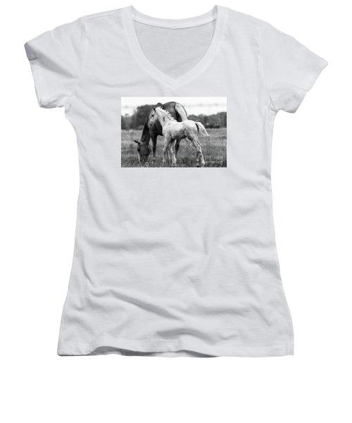 Texas Ranch  Women's V-Neck