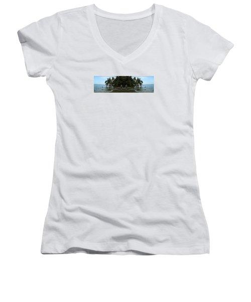 The Amazing Beach Women's V-Neck T-Shirt