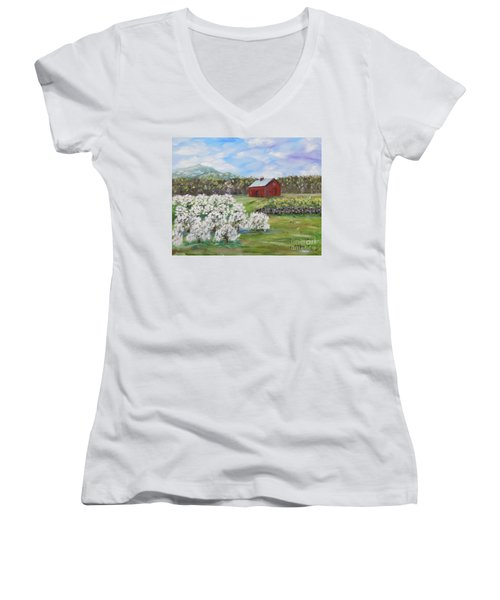 The Apple Farm Women's V-Neck T-Shirt